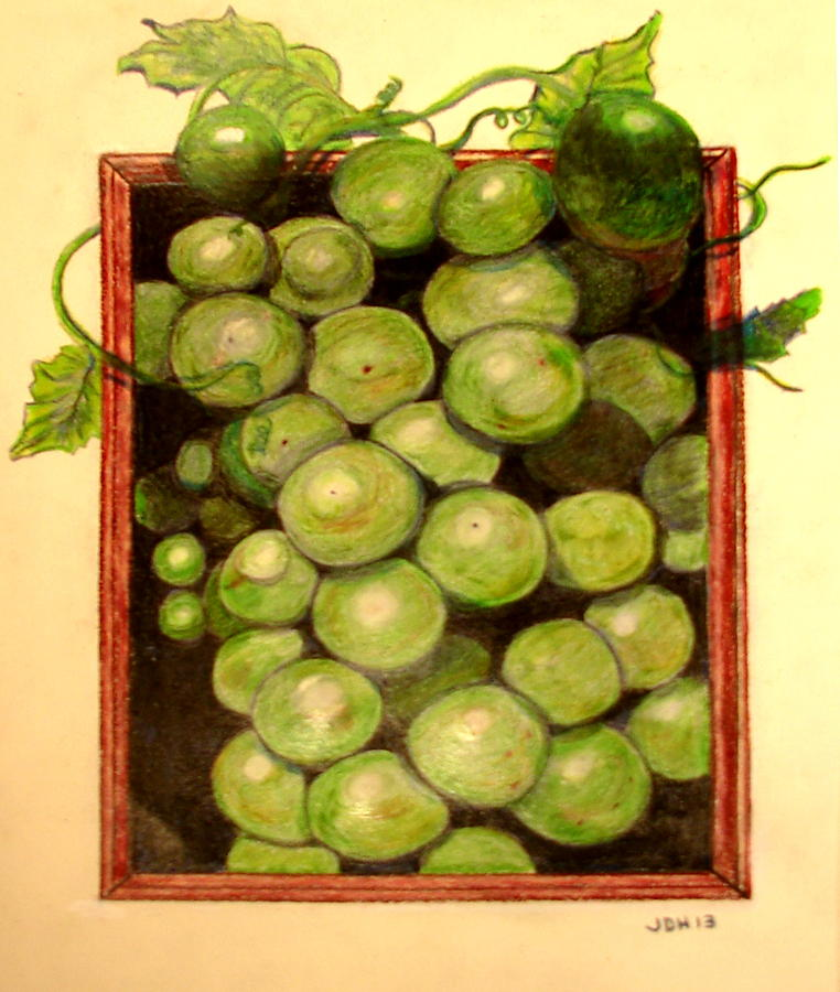 Colorpencil Painting - Grapes From A Frame by Joseph Hawkins