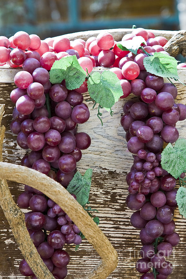 Grapes Photograph - Grapes by Tim Hightower