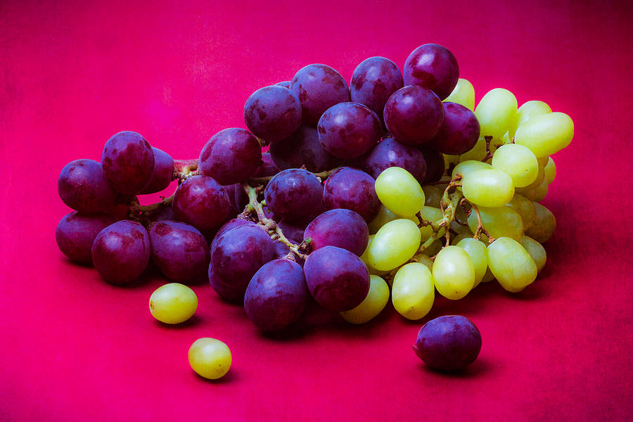 Vine Photograph - Grapes White And Red by Alexander Senin