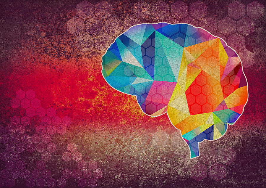 Graphic Brain Illustration Photograph by Sean Gladwell
