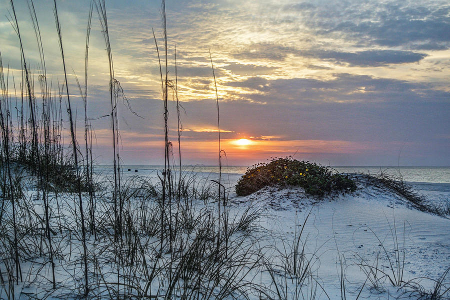 Alabama Digital Art - Grass And Mound Sunrise by Michael Thomas