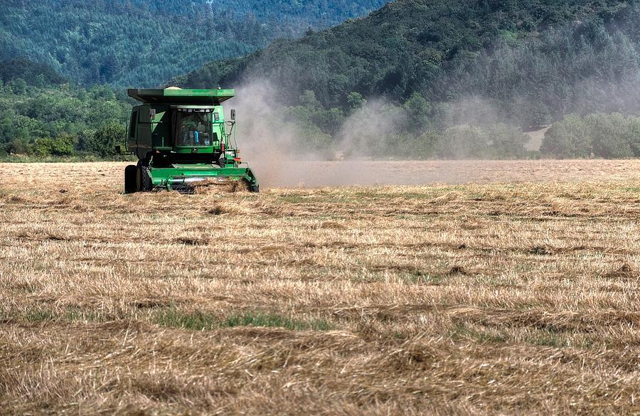 Grass Harvest 16000 Photograph