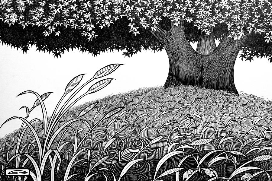 Pen And Ink Drawing - Grass Of The Earth by Guy Radcliffe
