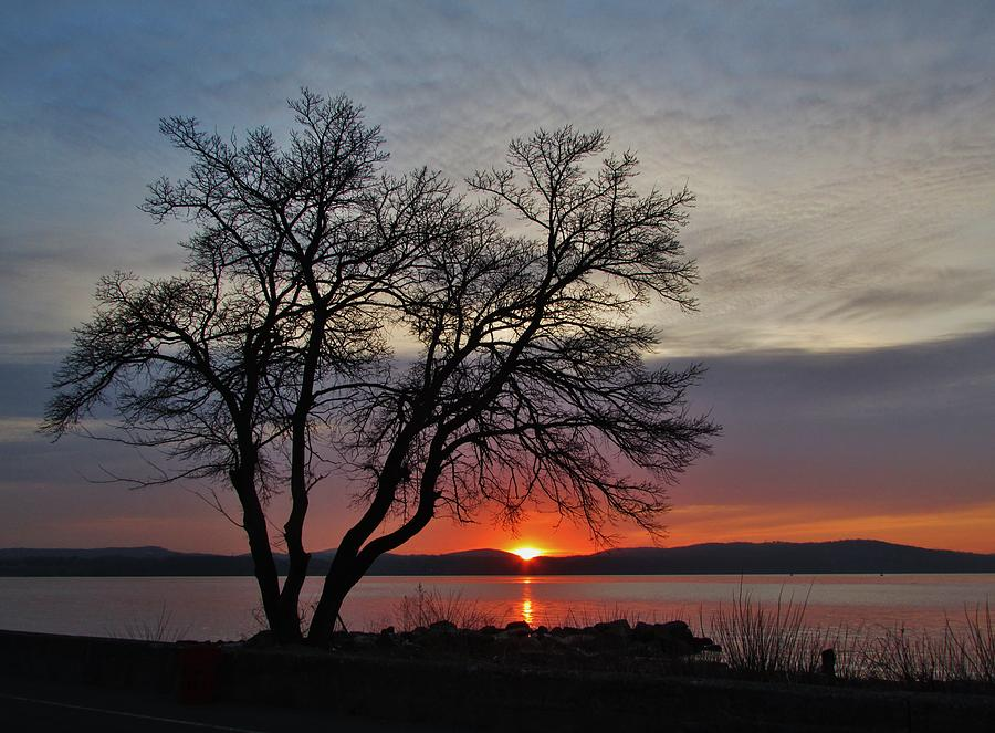 Grassy Point Sunrise Photograph by Thomas  McGuire