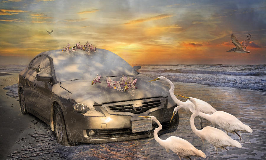 Nissan Mixed Media - Grateful Friends Curious Egrets by Betsy Knapp