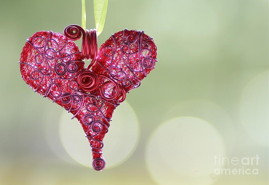 Love Recovery Hope Heart substance Abuse Photograph - Grateful Heart by Brenda Schwartz