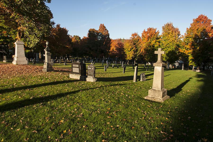 Graveyard Photograph - Graveyard by Philippe Boite