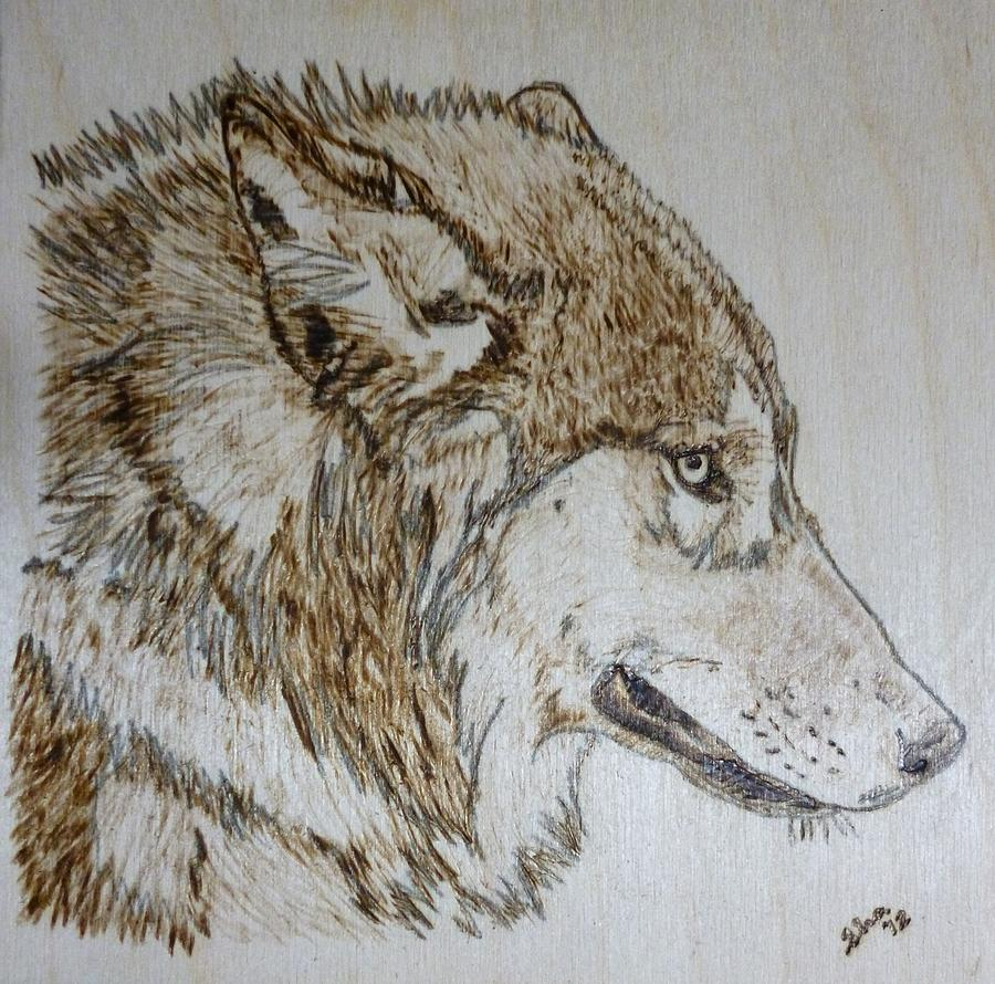 Wolf Pyrography - Gray Wolf Pyrographic Wood Burn Original 5.75 X 5.75 Inch Art Panel by Shannon Ivins