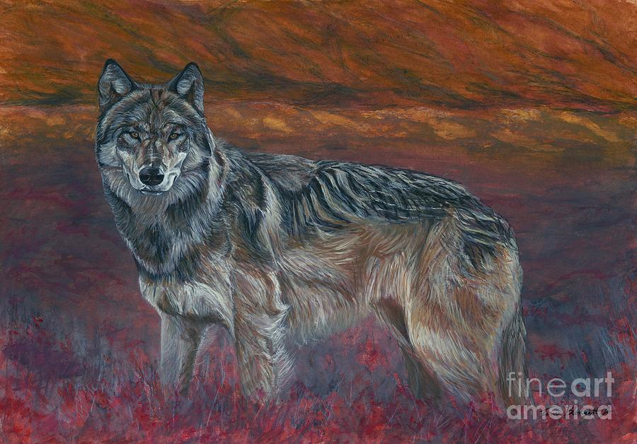 Wildlife Painting - Gray Wolf by Tom Blodgett Jr