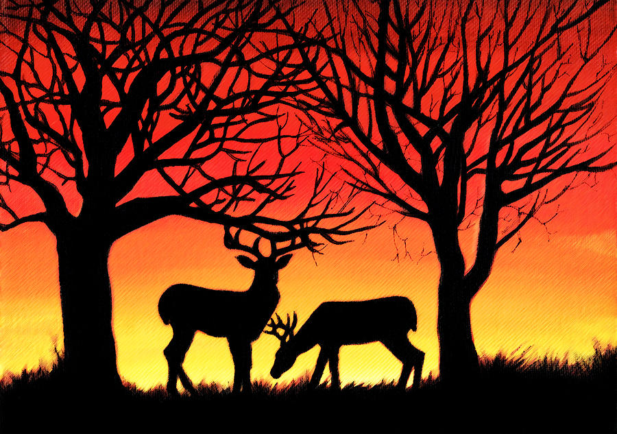 Grazing Deer At Sunset Painting by Alison Newth