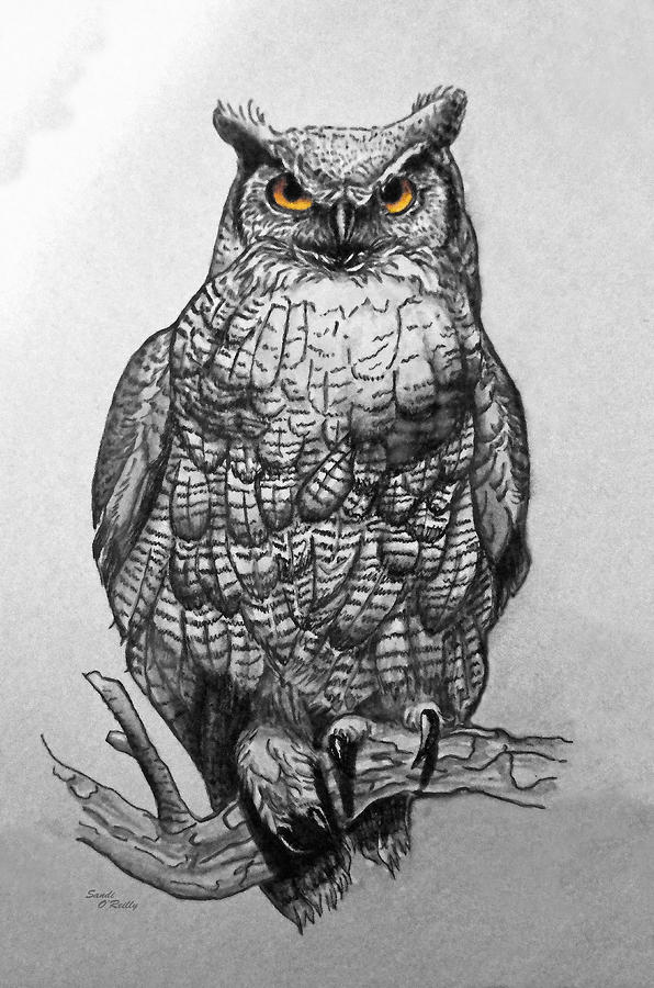 Great horned owl painting great horned owl black and white by sandi oreilly