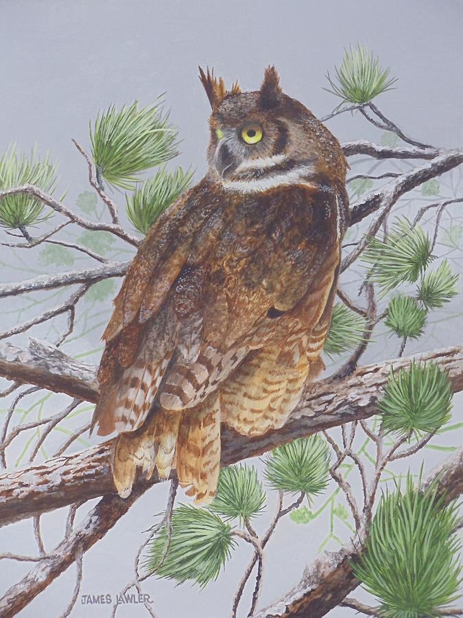 Great Horned Owl Painting by James Lawler