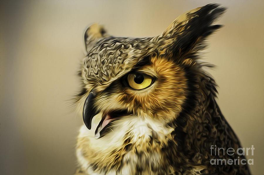Great Horned Owl Photograph - Great Horned Owl by Julieanna D
