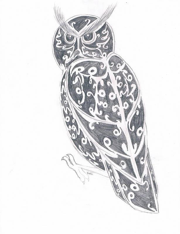 Great Horned Owl  Drawing by Kali Kardsbykali