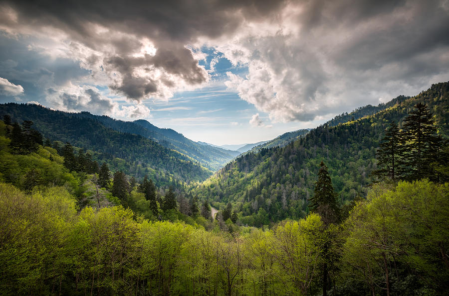 Great Smoky Mountains Photograph - Great Smoky Mountains Landscape Photography - Spring At Mortons Overlook by Dave Allen