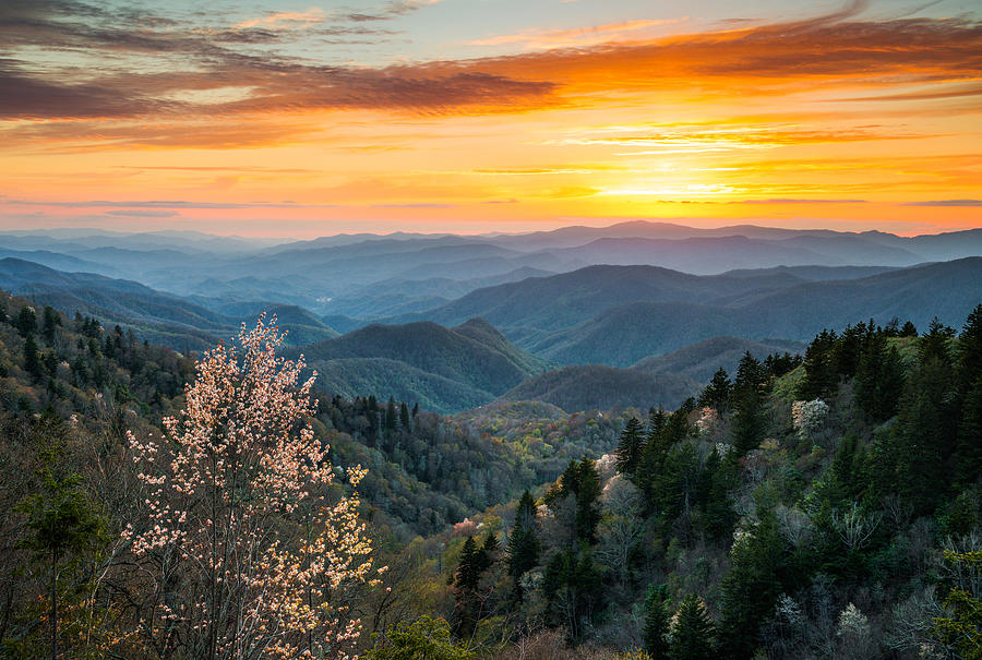 Great Smoky Mountains Spring Sunset Landscape Photography