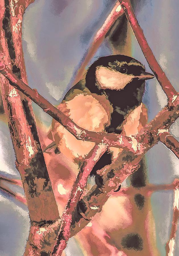Bird Photograph - Great Tit  A  Leif Sohlman by Leif Sohlman