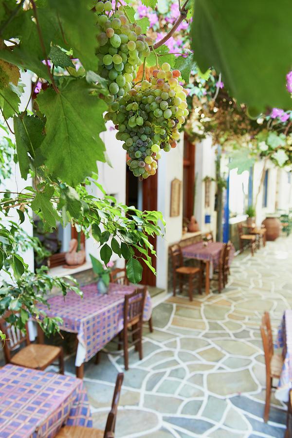 Greece, Cyclades Islands, Kythnos Photograph by Tuul & Bruno Morandi