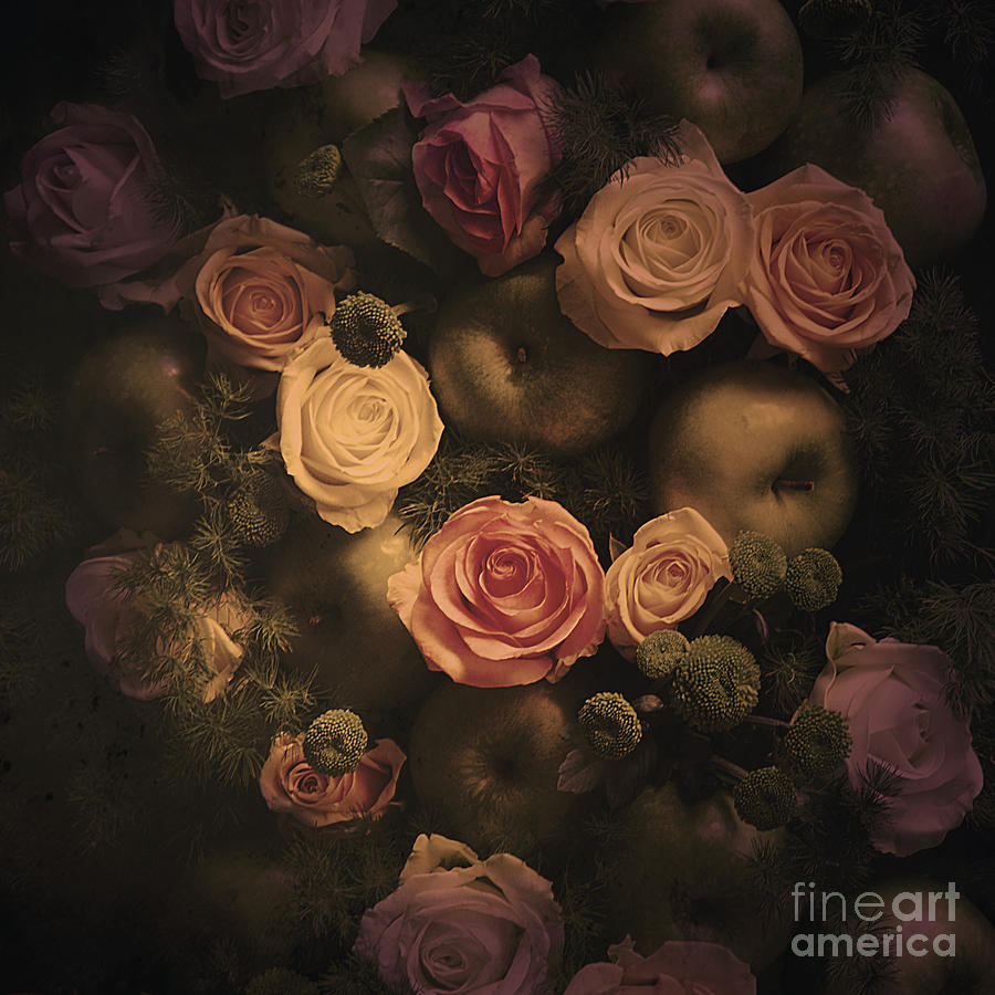 Color Photograph Photograph - Green Apples And Roses by Victoria Herrera