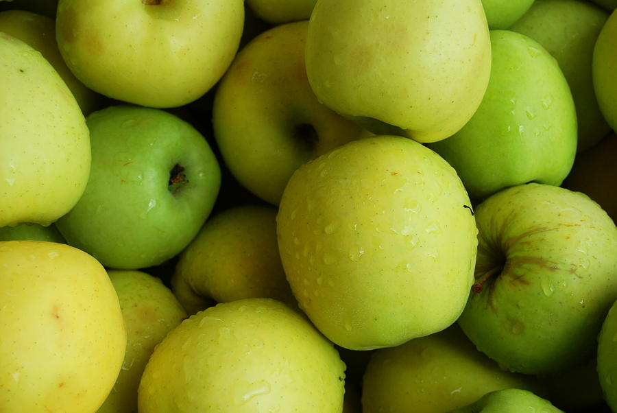 Green Apples Photograph - Green Apples by Mamie Gunning