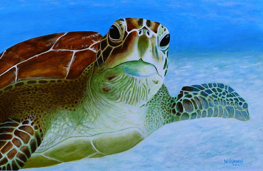Turtle Painting - Green Back Turtle by David Hawkes