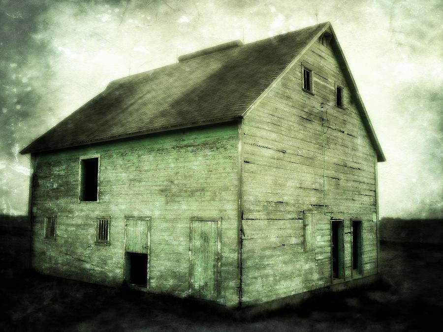 Barn Photograph - Green Barn by Julie Hamilton