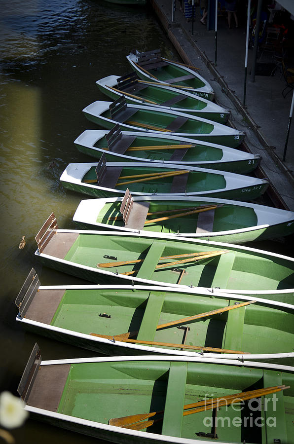 Green Boats Photograph