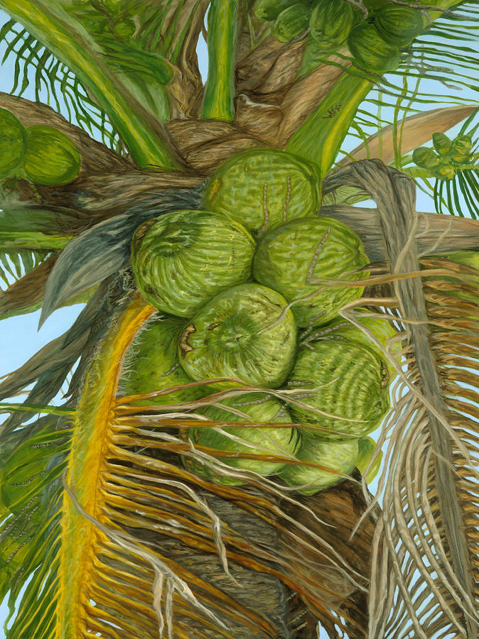 Green Coconut by Michael Allen Wolfe