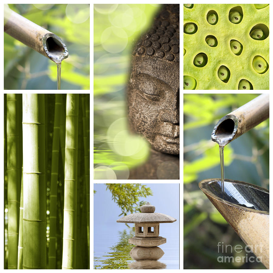 Buddha Photograph - Green Collage by Delphimages Photo Creations