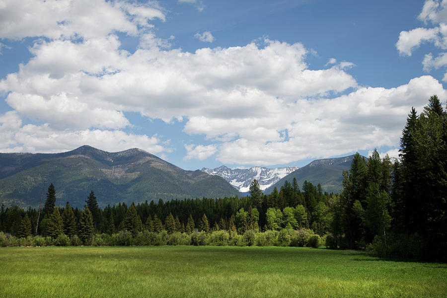 Green Field With Snow Capped Mountains Photograph by Andrew Geiger