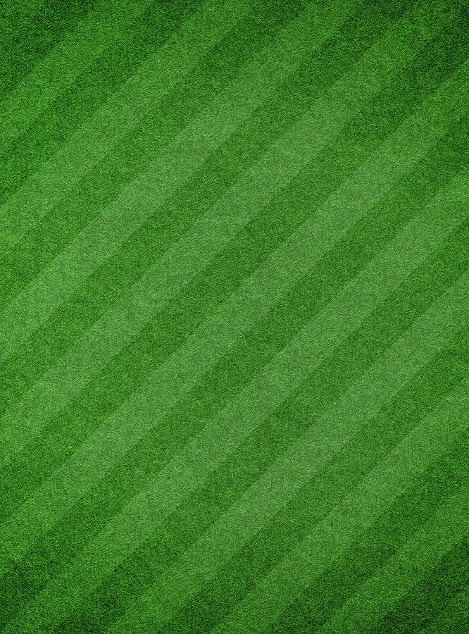 Green Grass Textured Background With Photograph by Hudiemm