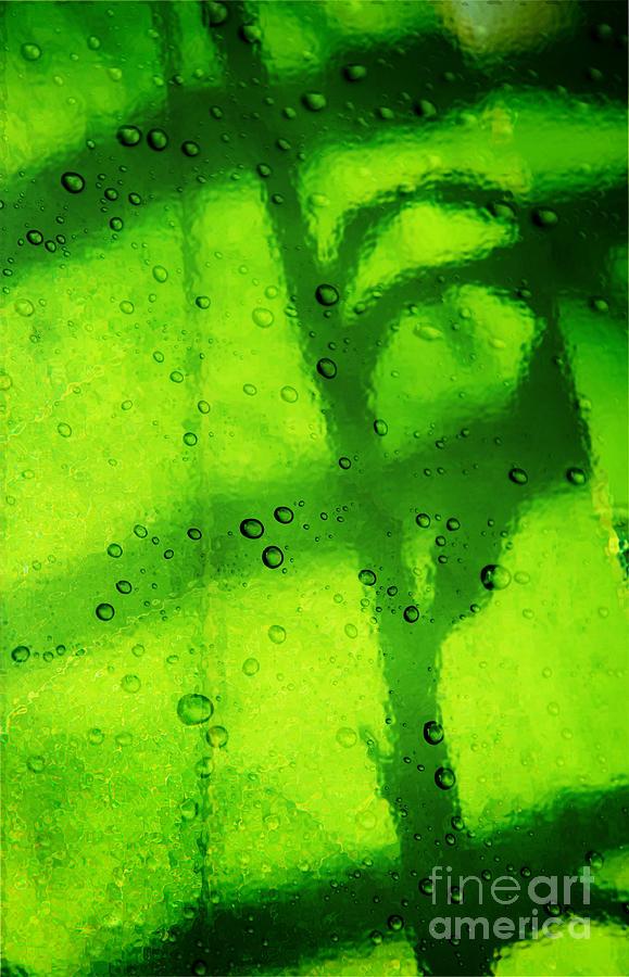 Leaf Photograph - Green Leaf Through The Glass by Lali Kacharava
