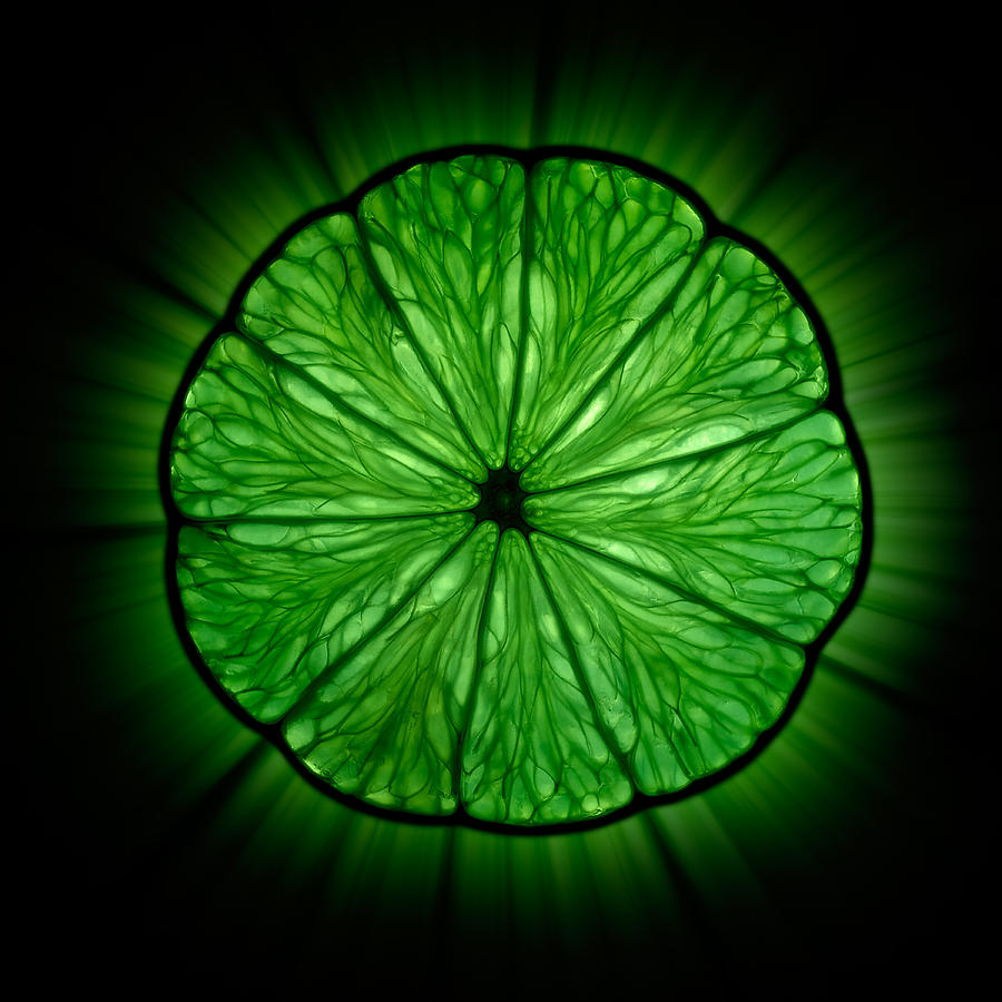 Green Lime Slice Photograph By Alexander Voss