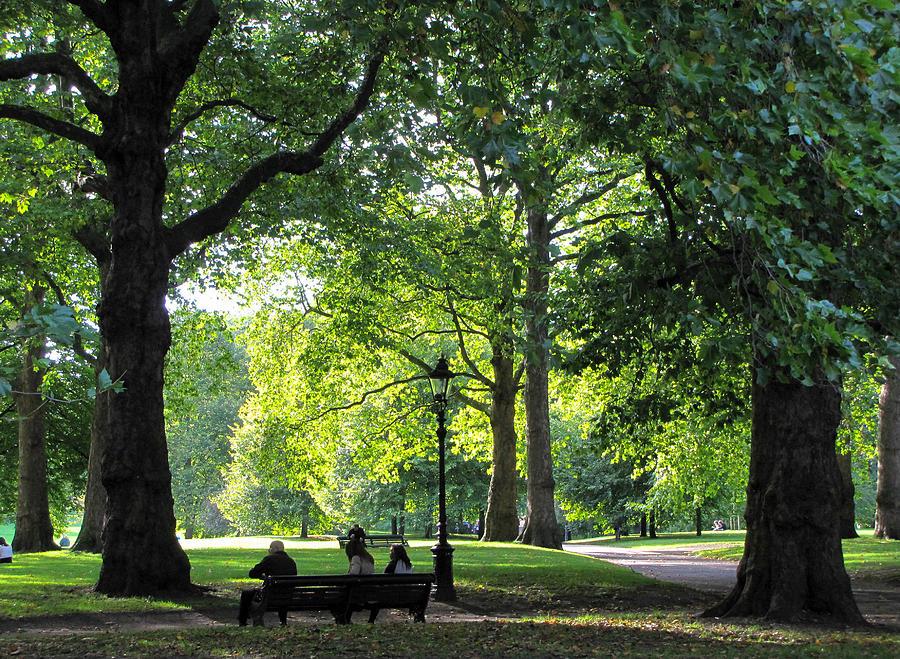Landscape Photograph - Green Park by Karen E Phillips