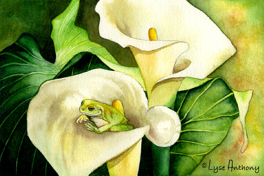 Frog Painting - Green Peace by Lyse Anthony
