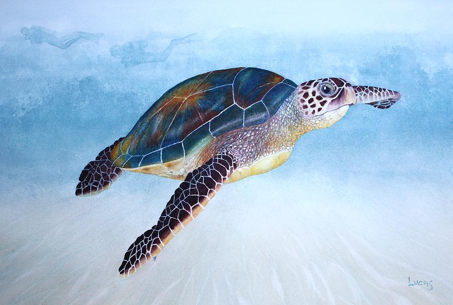 Turtle Painting - Green Sea Turtle II by Jeff Lucas