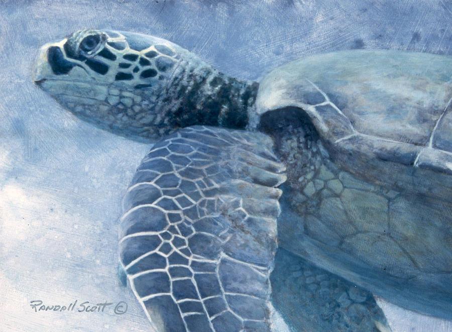 Reef Fish Painting - Green Sea Turtle by Randall Scott