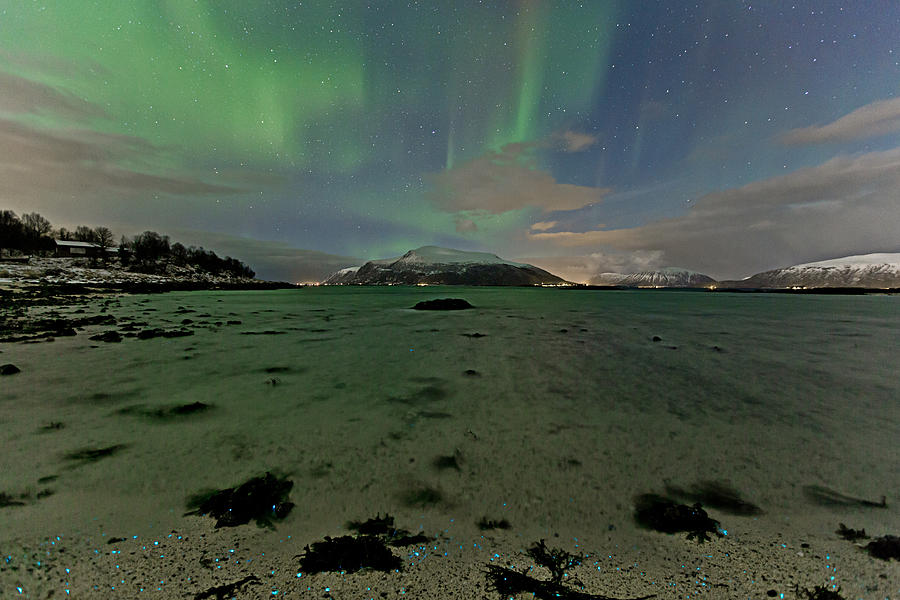 Norway Photograph - Green Sky Over The Beach by Frank Olsen