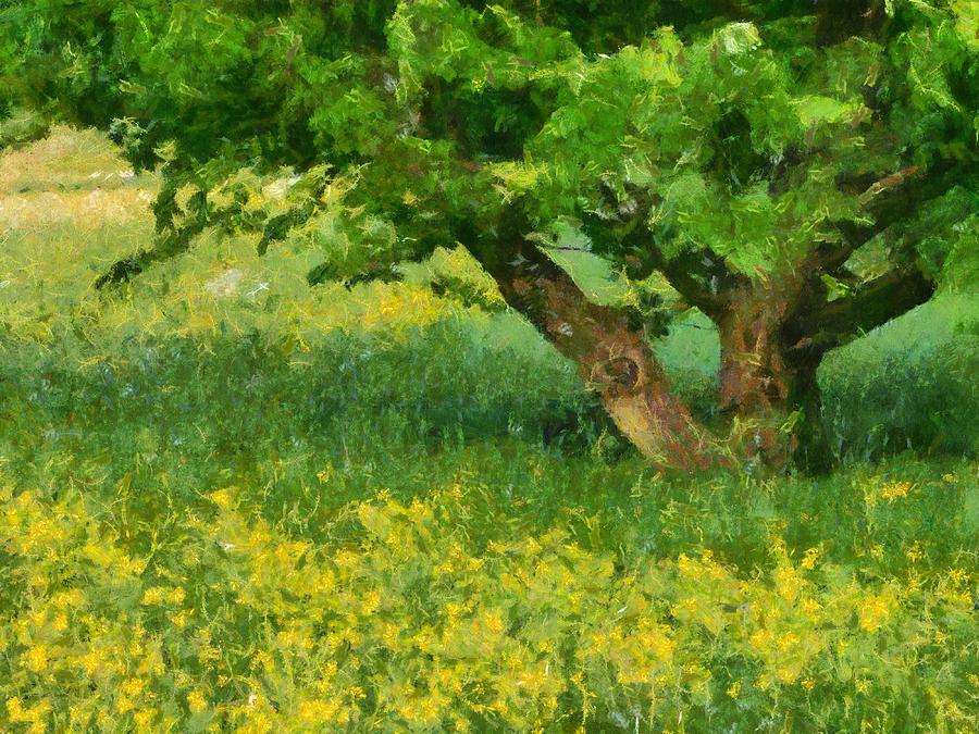 Oil Painting Looks Like Photo