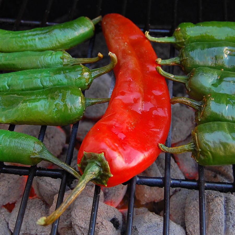 Mexican Food Photograph - Green To Red by Steven Milner