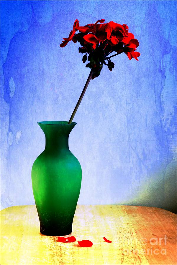 Photogs Photograph - Green Vase 2 by Donald Davis