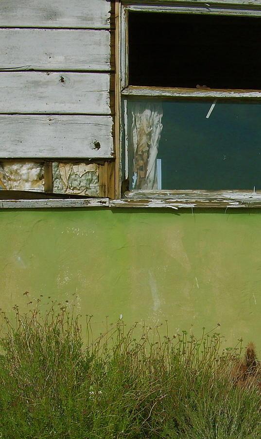 Green Wall by Joseph Litzinger