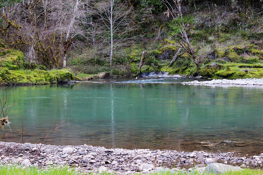Green Waters Photograph - Green Waters  by Tim Rice