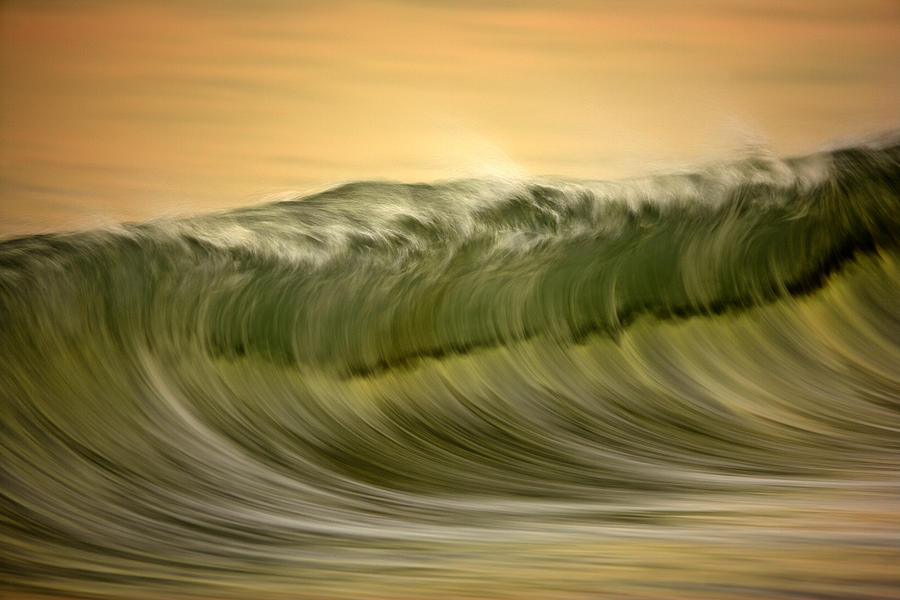 Green Wave #2  C6J7496 by David Orias