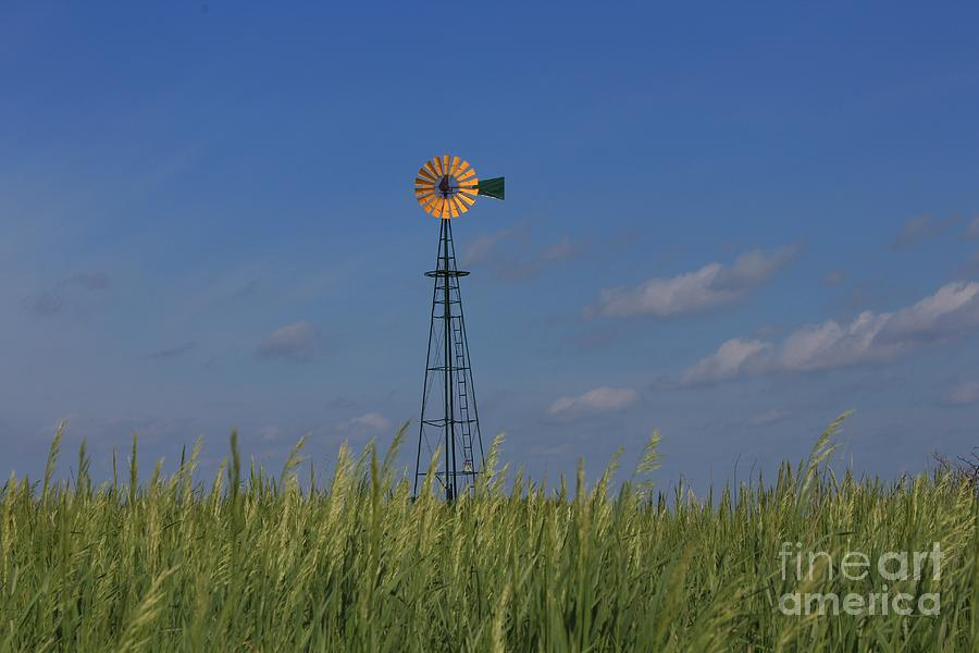 Sky Photograph - Green Wheat  Field With Green And Yellow Windmill by Robert D  Brozek