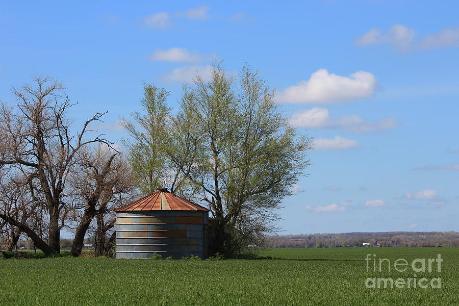 Landscape Photograph - Green Wheatfield With An Old Grain Bin by Robert D  Brozek