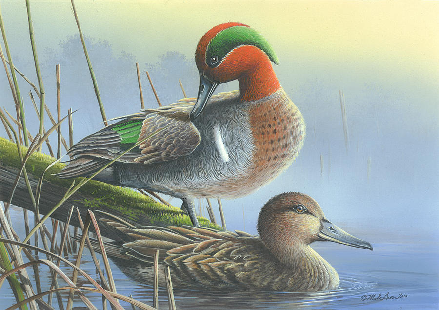Green-Winged Teal Ducks Painting by Mike Brown