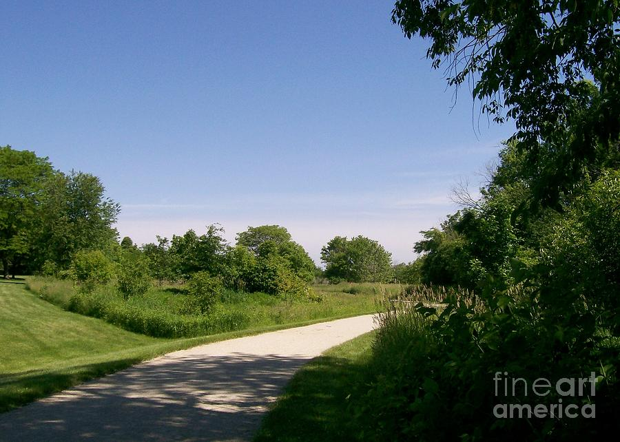 Greene Valley Photograph - Greene Valley Trail by Laurie Eve Loftin
