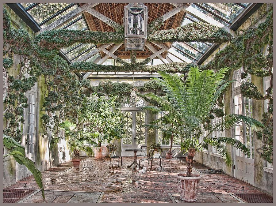 Greenhouse Photograph - Greenhouse Splendor by Elin Mastrangelo