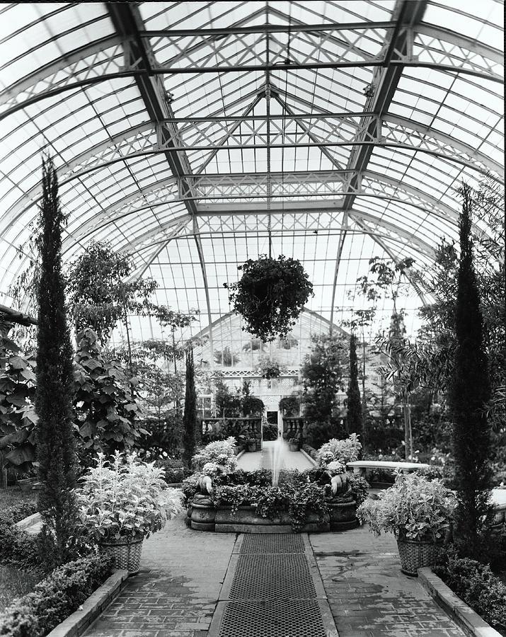 Greenhouse Photograph by Tom Leonard